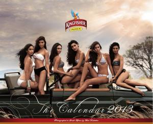 Kingfisher Calendar 2013